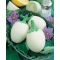 ПАТЛАДЖАН Кръгло Бяло Яйце (Скаморца) (Solanum Melongena L.)