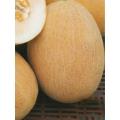 ПЪПЕШ Ананас (Cucumis melo L.) MELONE Ananas